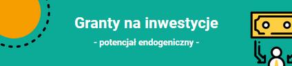 Granty na inwestycje - potencjał endogeniczny